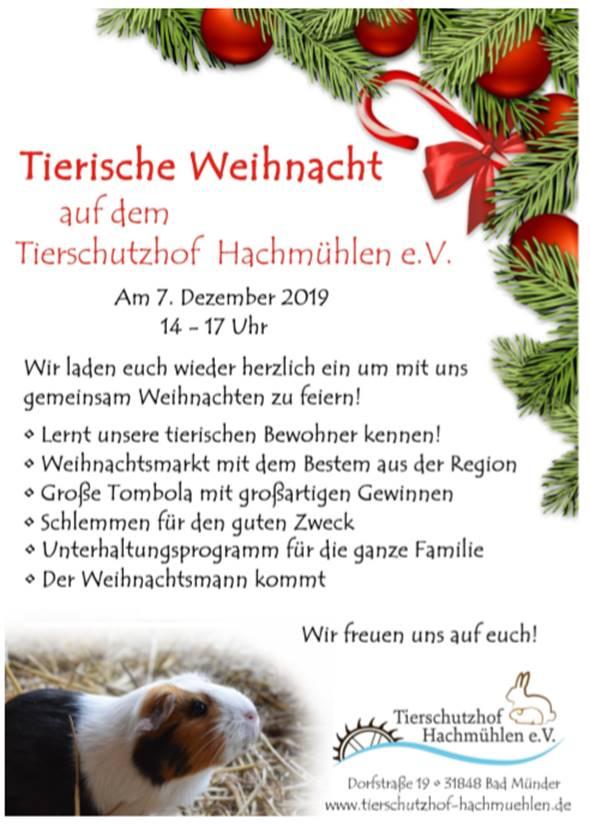 Tierische Weihnacht auf dem Tierschutzhof Hachmühlen @ Tierschutzhof Hachmühlen | Bad Münder am Deister | Niedersachsen | Deutschland